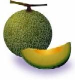 melon01-001.jpg